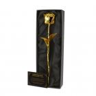 Wieczna róża pokryta 24 karatowym złotem