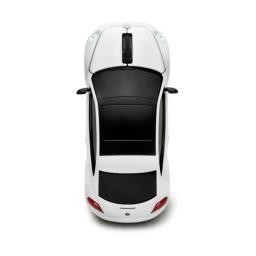 VW Beetle  mysz