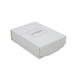 Zapalniczka plazmowa srebrna USB Balmain