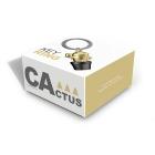 Pudełko brelok kaktus